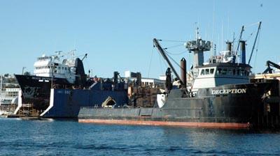 Fishing Boats at Shipyard in Seattle